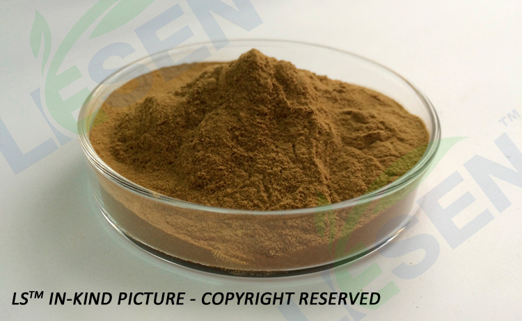 Factory Supply High Quality 100% Natural Celery Extract Powder