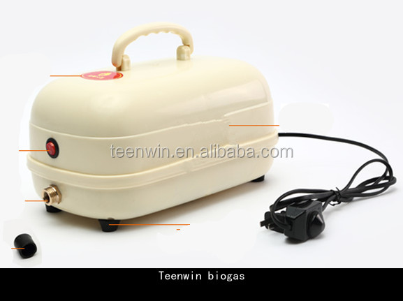Teenwin small biogas compressor