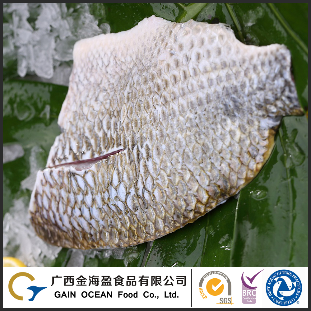 Farm Raised Fish Frozen Sea Food Gain Tilapia Skin-on Fish Fillet