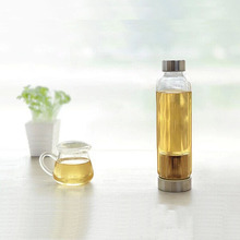 Promotional Tea Drinking Clear Stainless Steel Infuser Water Bottle