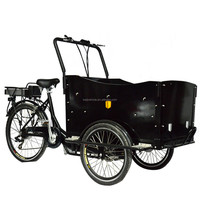 CE danish family 3 wheel 250 Watts cargo motor tricycle