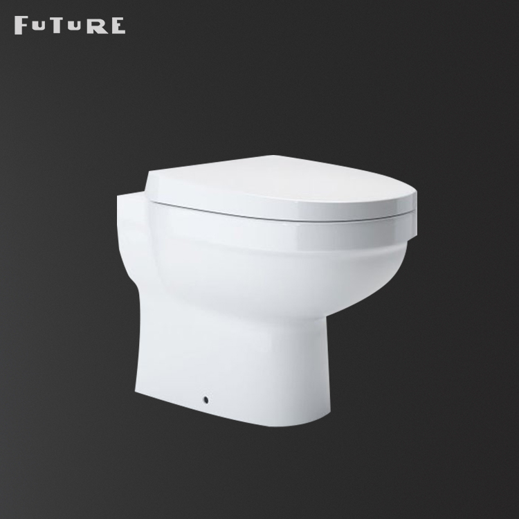 China cistern concealed floor mounted back to wall ceramic toilet