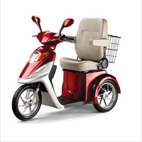 China Adult Differential Electric Motorized Tricycle