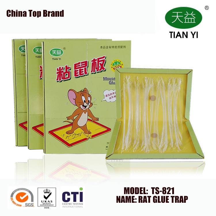 Insect glue trap for mouse