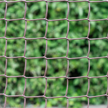 plastic hdpe garden lattice privacy screen fence 50mm mesh roll