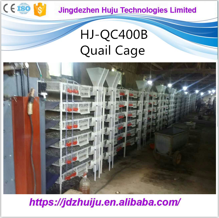 Hot sale H type automatic poultry farm layer plastic quail cage for sale