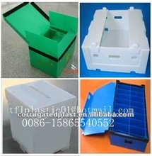 Eco-friendly Corrugated Plastic Fruit Packing Box