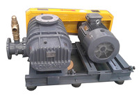root vacuum pumps -posiive displacement pumps