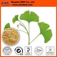 Ginkgo Biloba Leaf Extract Total Ginkgo Flavone Glycosides Total Terpene Lactones