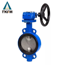 "TKFM Chinese manufacturer 4"" ductile flue gas butterfly valve weights"