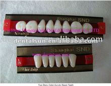 Two Story Color Acrylic Resin Teeth