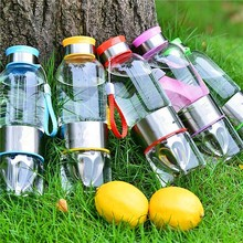 hot new products for 2015 500ml glass stainless steel fruit infuser water bottle