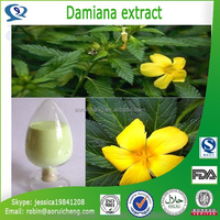 Natural Herbal Extract damiana tea