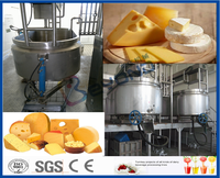 Cheese vat