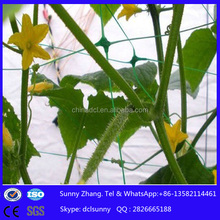 China hot sale <strong>PP</strong> +UV cucumber climbing net/plant clibing nets