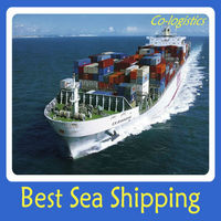 sea logistics shipping company container transport from shanghai to Memphis