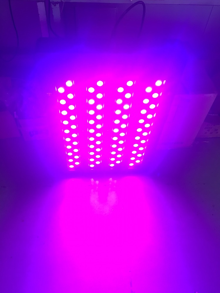 Top SMD 3535 led growing plants for indoor use with 3 years warranty