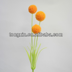 67150snow ball flowers Sell to Shantou have good price and quanlity