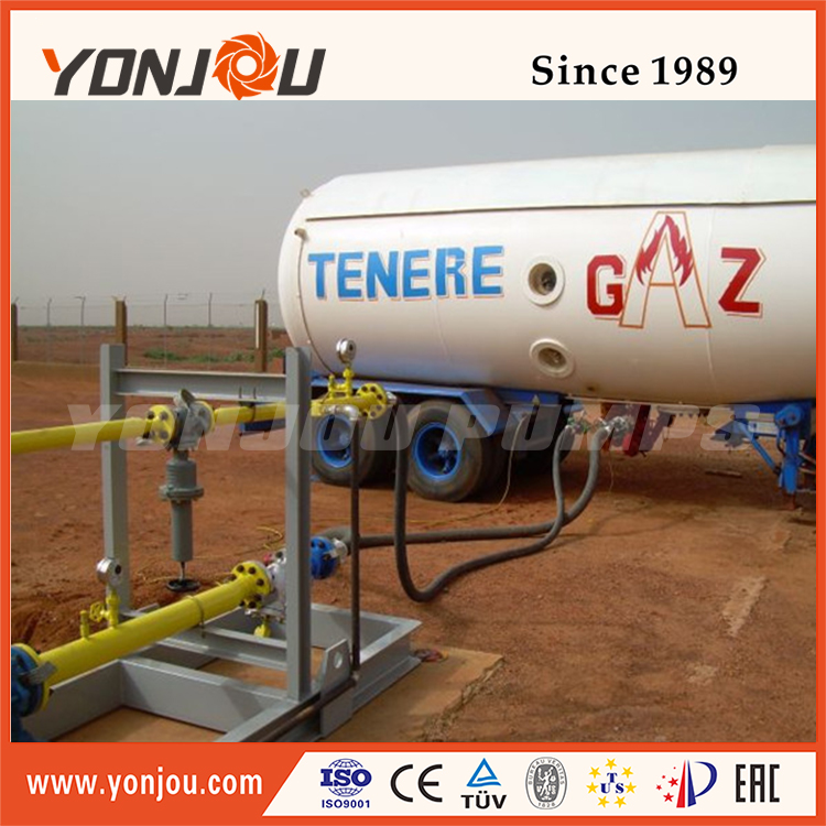 Yonjou 1inch lpg/gas/gasoline liquified oil pump