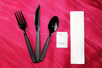 Plastic black handle flatware
