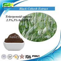 Factory Price Natural Black Cohosh Extract, 2.5% Triterpene Glycosides, Cimicifuga Racemosa Extract