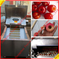 multi-function stainless steel cherry/plum/olive seed remove machine