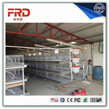 poultry layer broiler rearing cage for Zambia chicken house