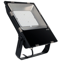 New induction outdoor tree led rgb flood light 12v 100w