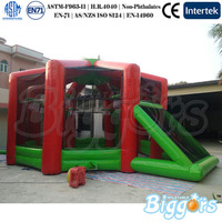 Large sports Games Arena Inflatable Field Goal Inflatable Pitch With Roof