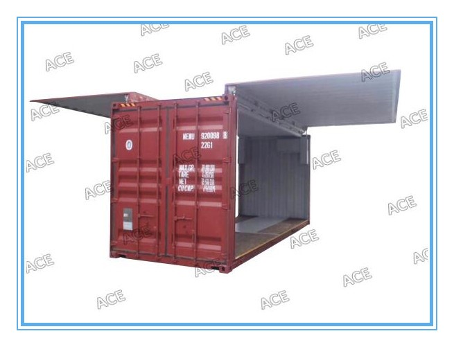 ISO Wingspan Container flying open side loading container 20ft foot 40 ft open side container