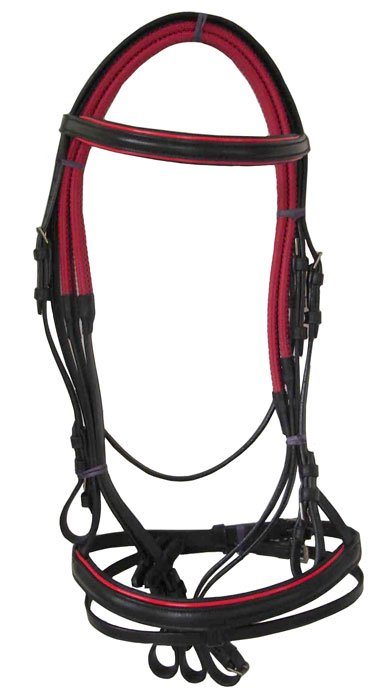 Horse Bridle Patent Leather