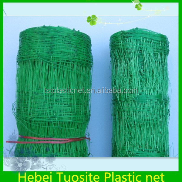 Pea and Beans Netting, Plant Support Netting