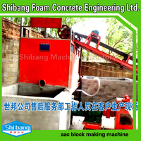 Making machine PHQJ-1 China manufacture foam concrete block making machine