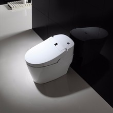 most advanced toilet manufacturers prices
