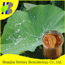 Natural medicinal herbs extract 10:1 lotus extract powder for lower cholesterol