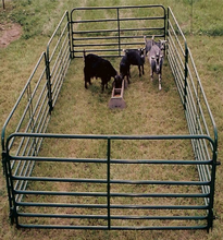 cheap Anping 6 bars portable cattle yard panel fence / horse corral panel / livestock panel(Factory)