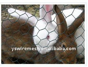 small animal cage/ single rabbit cage