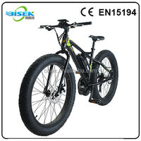 new style 48v 500w 750w light big tire electric bicycle e cycle bike