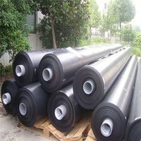 2mm Geomembrane HDPE/HDPE Geomembrane for fish tank