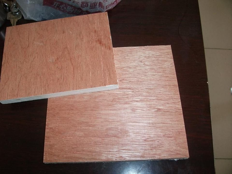 4mm Bintangor Plywood Best Price Okoume Birch Poplar