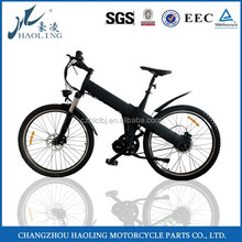 FLASH e-bike manufacturer,2014 new model FLASH electric mountain bike,fast long range electric bike
