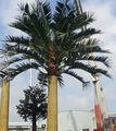 camouflaged palm tree telecommunication antenna tower/bionic palm tree for decoration