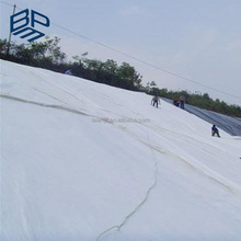 PP or PET Nonwoven Geotextile 200g m2 Ground Fabric for Driveways