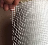 Low price of factory directly sell wall reinforcement fiberglass mesh with long-term service Higih Quality