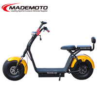 Chinese Off Road Electric Moped 2 Seats Scooter ES8004