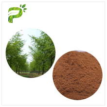 Natural Plant Extract Prevent Cardiovascular diseases Ginkgo Biloba Extract powder
