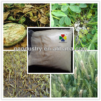 Excellent Systemic Soil Fumigants Hymexazol Supplier