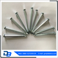 Factory hot sale low price chromatic steel concrete nails