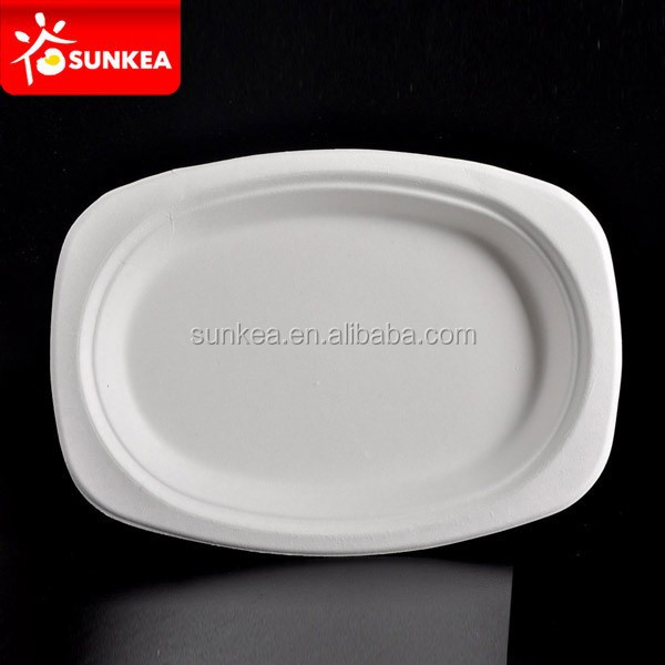 High Quality Disposable Plate,Biodegradable Bagasse Disposable Plate