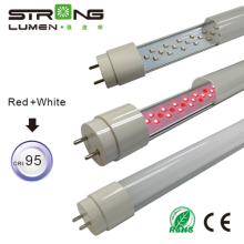 Patented design CRI>90, 95 LED Pink 18w led t8 tub8 `t8 led tube 120cm for Meat display